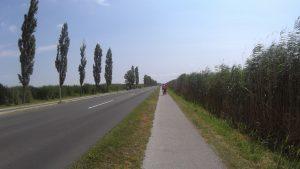 cesta k pristavu v Morbisch am See